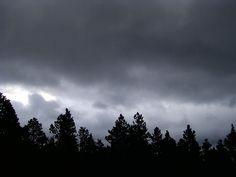 Nimbostratus pannus - Wolken Online