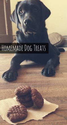 Pumpkin and Molasses Healthy Homemade Dog Treats. A dog cookie your furry friends will love.