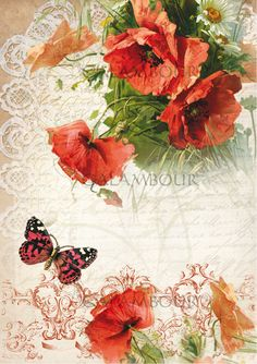 OLD LETTER, MULBERRY PAPER, POPPIES, DECOUPAGE CALAMBOUR, FLOWERS, LACE, BUTTERFLY,  ROMANTIC , TT14