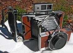 Bernstein Polaroid 250