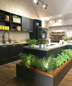 47 modern architecture and garden in house interior design of a bright apartmen 1 Kitchen Herbs, Herb Garden In Kitchen, Herbal Kitchen, Best Kitchen Cabinets, Kitchen Cabinet Design, Kitchen Decor, Kitchen Ideas, Kitchen Wood, Kitchen Staging