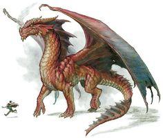 Drago rosso