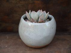 glossy white and rust handmade ceramic planter