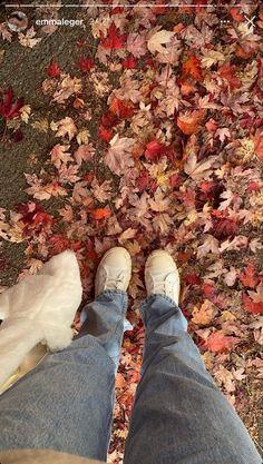 Foto Instagram, Instagram Story, Autumn Instagram, Autumn Cozy, Fall Winter, Japon Illustration, Autumn Aesthetic, Best Seasons, We Fall In Love
