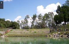 Wechee River, Spring Hill, FL