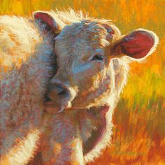 """""""Ivory Light""""  pastel, 12x12 inches"""