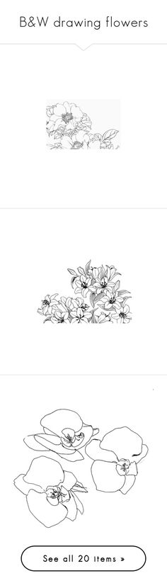 """B&W drawing flowers"" by aliceridler ❤ liked on Polyvore featuring fillers, doodles, drawings, backgrounds, art, text, effects, details, magazine and embellishments"