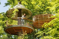 This is probably the least invasive version of a treehouse being supported by straps from higher branches rather than anchored into the trunk of the tree. It's a design from ErlebNest. More treehouses at www.naturalhomes.org/treehouses.htm