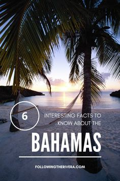 With more than 700 islands, discover more about The #bahamas than just its sandy beaches and picture perfect scenery.  #caribbean island. #bahamastravel #bahamastrip #travel #caribbeantravel Bahamas Travel | Bahamas Trip | Things to do in the Bahamas | Places to Visit in the Bahamas | Bahamas Travel Tips | Travel Destinations | Bahamas Travel Guide | Caribbean Travel Travel Usa, Travel Tips, Travel Abroad, Budget Travel, Travel Guides, Places To Travel, Travel Destinations, Bahamas Island, Southern Caribbean