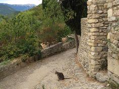 Provence 2015 Montbrun-les-Bains