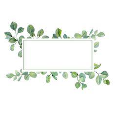 Feuille Eucalyptus, Free Vector Graphics, Royalty, Clip Art, Illustrations, Royals, Illustration, Pictures, Illustrators