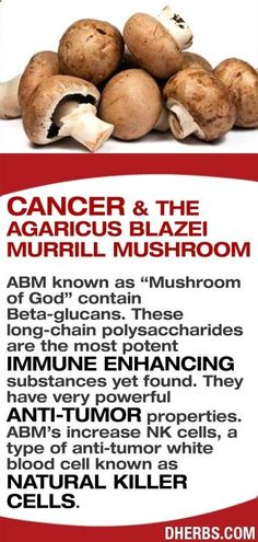 Tips for Anti Diet - Health Tip Thursday: The Agaricus Blazei Murrill Mushroom has very powerful anti-tumor properties. Image source: dherbs.com The Anti-Diet Solution is a system of eating that heals the lining inside of your gut by destroying the bad bacteria and replacing it with healthy bacteria. By doing so, you're improving your immune system, reducing the inflammation inside of your body, but most importantly – allowing you the ability to lose weight and reduce the inches around...