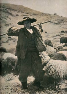 Pastor da Serra da Estrela   (Ilustração Portuguesa - 16 de Janeiro de 1911)