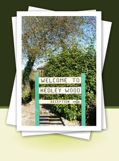 Hedley Wood home page