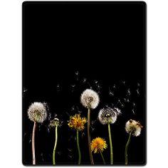 Shower Curtain 48 X 72 Inch Dandelion Beautiful Flying Beautiful Printing Polyester Fabric