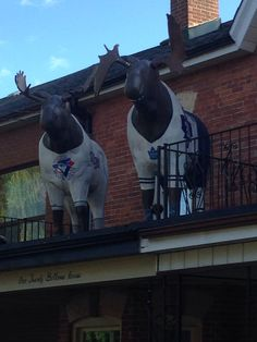 Blue Jays and Maple Leafs moose statues on front porch of home on Bellevue Av #toronto #bluejays #leafs