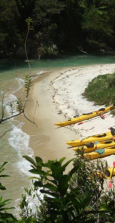 Peeking down at kayaking tourists - Tata Bay, NZ