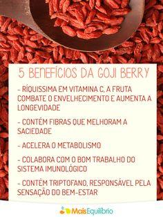 Saiba porque incluir a frutinha do momento na sua dieta! http://maisequilibrio.com.br/nutricao/goji-berry-a-frutinha-do-momento-2-1-1-740.html