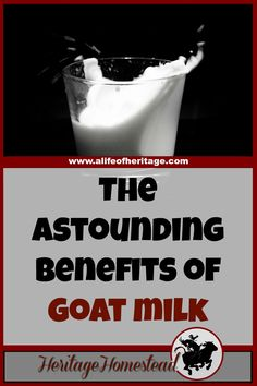 Goat Milk   Drinking Milk   Homesteading   Raw Milk benefits   The Benefits of Goat Milk are Astounding. Truly. These 10 reasons are why you should look into drinking goat milk. Your body will thank you!