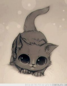 Kawaii~ May attempt to draw this lil kitty😍😍