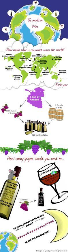 De wereld van wijn in een infographic - Wijnbloggers.nl