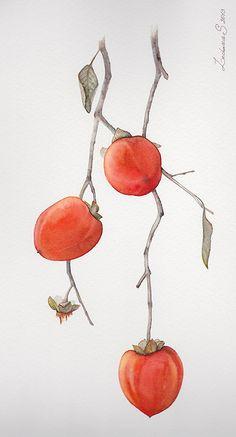 Persimmons. Traditional art ( watercolor). Prof. paper: Canson Fontenay 300 g/м2 (cotton). Svetlana Markina (LechuzaS) Size: 20cm*35cm