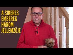A sikeres emberek három fontos jellemzője - Szabó Péter motiváció - YouTube
