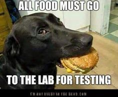 Must test the food!
