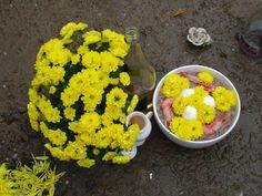 Oferendas para Oxum | Omolokum