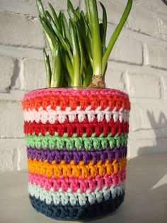 Use this colorful crochet pot cover for inspiration for your next project. Crochet in color no matter what you're working up.