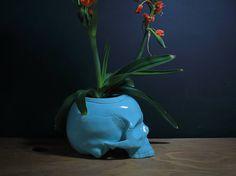 Skull Planter - Self Watering Ceramic Planter -Turquoise - Teal - Ceramic Pottery Original design. Rose Plant Care, Skull Planter, Porous Materials, Planting Roses, Teal, Turquoise, Self Watering, Ceramic Planters, Ceramic Pottery