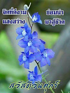 Good Morning Flowers, Say Hi, Good Day, Knowledge, Signs, Nice, Art, Google, Buen Dia