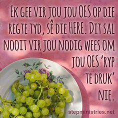 Afrikaans, True Words, Cantaloupe, Christ, Fruit, Food, Essen, Meals, Yemek