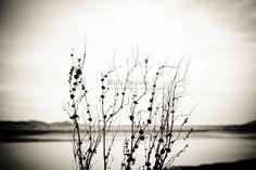 Autumn II | Cropping Reality by Ula Kapala