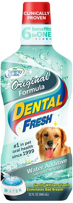 SynergyLabs Dental Fresh *** Wow! I love this. Check it out now! : Feeding and Watering Supplies