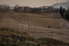 Team Green Architects | Queenstown | Passive House Passive House, Grand Canyon, Architects, Country Roads, Green, Nature, Travel, Naturaleza, Viajes