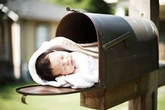 baby in mailbox.  People were making fun of it, but I think it's cute.