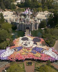 Disney Dreamer - Disneyland Photo Gallery - I'm in the photo. Disneyland Photos, Disneyland California, Vintage Disneyland, Disneyland Resort, Disneyland Parks, Walt Disney, Disney Theme, Disney Love, Disney Magic