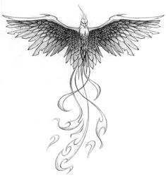 "Pheonix Tattoo - with the words """"if you don't jump you will never know if you can fly""    across my chest and arms"