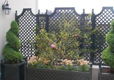 Outdoor Wood Privacy Trellis home-fencing-and-gates Privacy Trellis, Trellis Fence, Outdoor Privacy, Lattice Fence, Garden Trellis, Outdoor Fencing, Trellis Panels, Wood Trellis, Privacy Panels