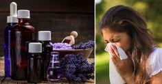 Las alergias a menudo son demasiado dolorosas, desagradables e incómodas, pero en lugar de usar varios medicamentos, debe probar los aceites esenciales. Estos aceites alivian: La inflamación. Aumentan el sistema inmunológico. Limpian los senos bloqueados. Los siguientes