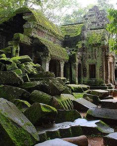Are you a Lara Croft or Indiana Jones looking to explore ancient ruins? Ta Prohm… Are you a Lara Croft Ancient Ruins, Ancient Artifacts, Mayan Ruins, Voyage En Camping-car, Poster Xxl, Architecture Antique, Architecture Design, Temple Ruins, Forest Creatures