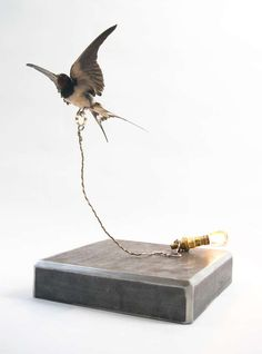 love this Taxidermy Lighting by Giovanni Squatriti
