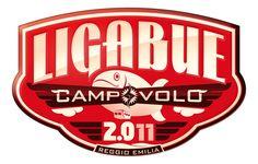 Ligabue - Campovolo 2.0 (libro + DVD versione 2D) su www.postepayfun.it.