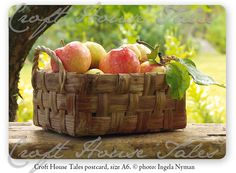 Seasonal Food, Four Seasons, Vintage Postcards, Food Pictures, Finland, Countryside, Berries, How Are You Feeling, Apple