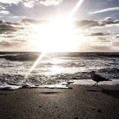 The beach is where my heart is