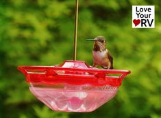 Stick-on Hummingbird Feeder for the RV - It doesn't take much storage space. The suction cup hanger makes it quick and easy to put up and take down. Rv Camping Tips, Travel Trailer Camping, Rv Forum, Florida Camping, Rv Parts, Humming Bird Feeders, Rv Trailers, Rv Life, Hummingbird