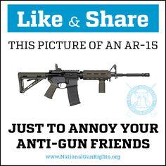 National Association for Gun Rights Gun Humor, Gun Rights, Big Government, National Association, Conservative Politics, Gun Control, Annoyed, Haha, My Life