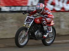 Flat Track Motorcycle, Flat Track Racing, Bobbers, Sportster Cafe Racer, Nicky Hayden, T Race, Flat Tracker, Bike Rider, Grand National