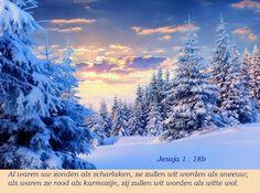 Al waren uw zonden als sharlaken, ze zullen wit worden als sneeuw; al waren ze rood als karmozijn, zij zullen worden als witte wol.   Jesaja 1:18b